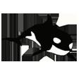 Orca - color 16023