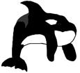 Orca - color 16025